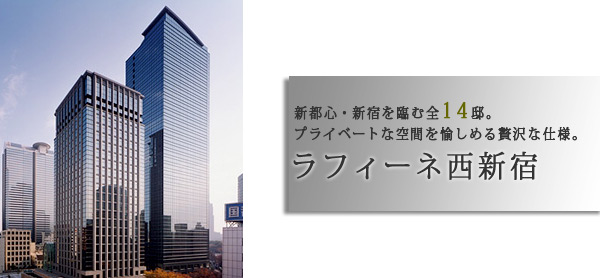 ラフィーヌ西新宿